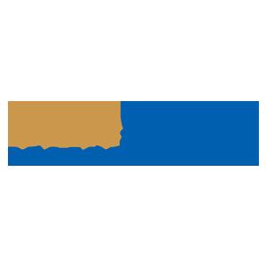 Bluestone_logo